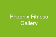 Phoenix-Gallery